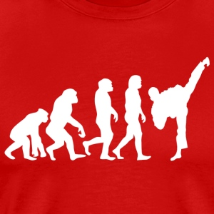 ++ ++ Martial Arts Evolution - Men's Premium T-Shirt