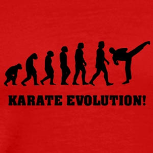 karate evolution - Premium-T-shirt herr