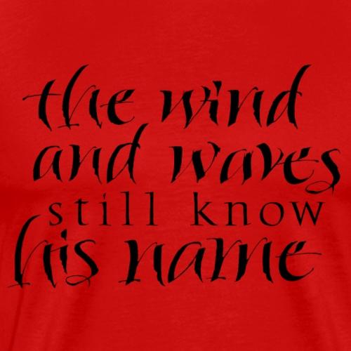 shirt the wind - Männer Premium T-Shirt