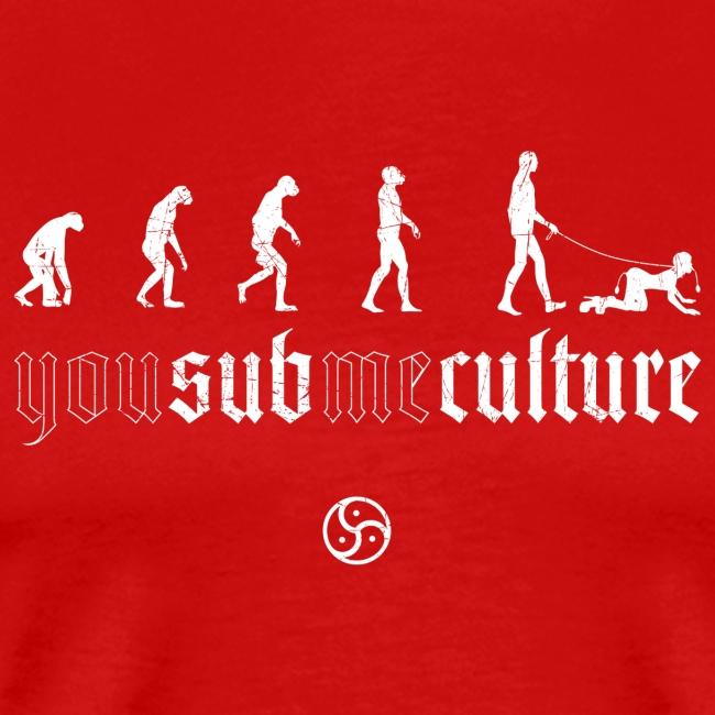 NMN SubCulture Evolution v2
