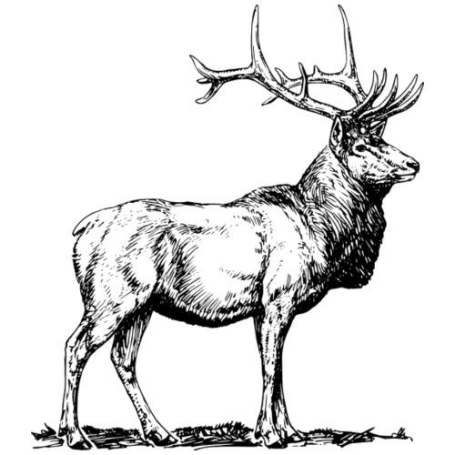 Ciervo - Camiseta premium hombre