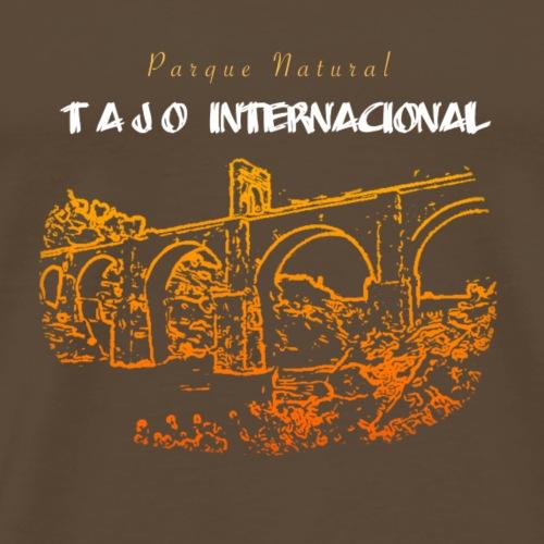 Camiseta puente de Alcántara - Camiseta premium hombre