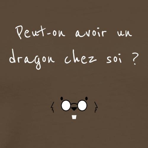 Peut-on avoir un dragon chez soi ? - T-shirt Premium Homme