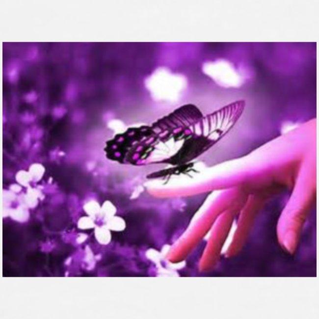 papillon mauve