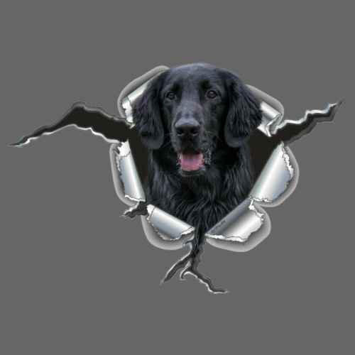 Flat Coated Retriever im Metall-Loch - Männer Premium T-Shirt