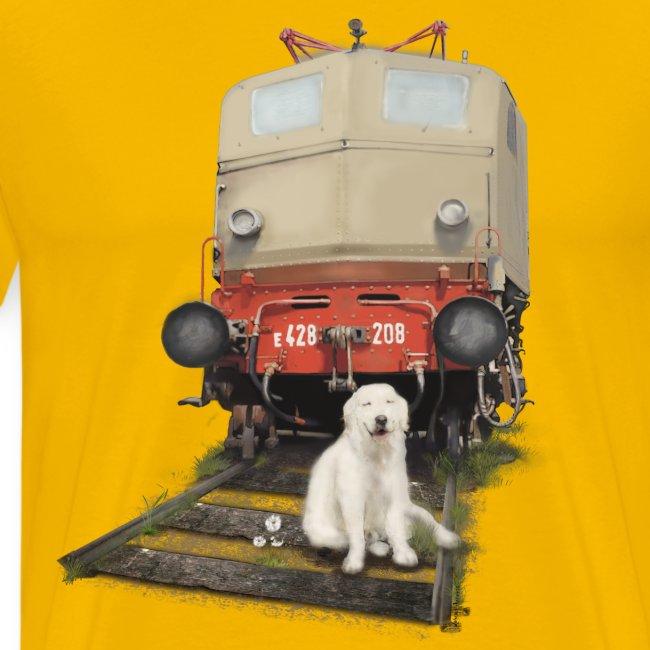 Golden Retriever with Train