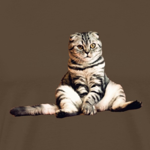 Funny Cat - Camiseta premium hombre