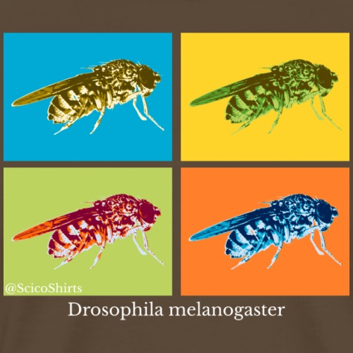 Pop Art Drosophila (white) - Men's Premium T-Shirt