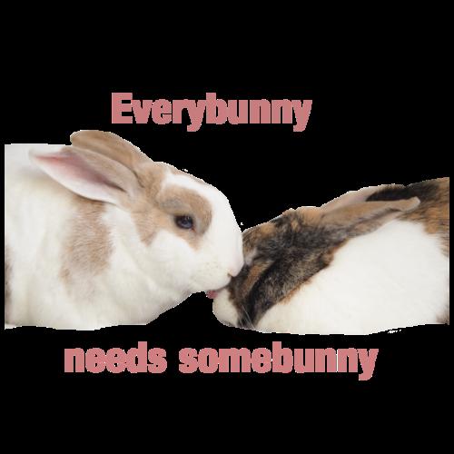 Everybunny needs somebunny - Men's Premium T-Shirt