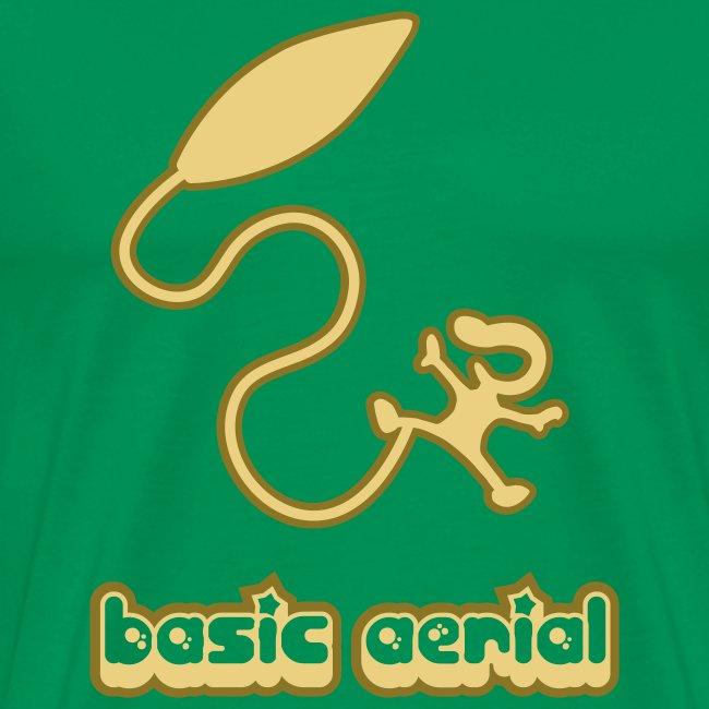 Basic Aerial
