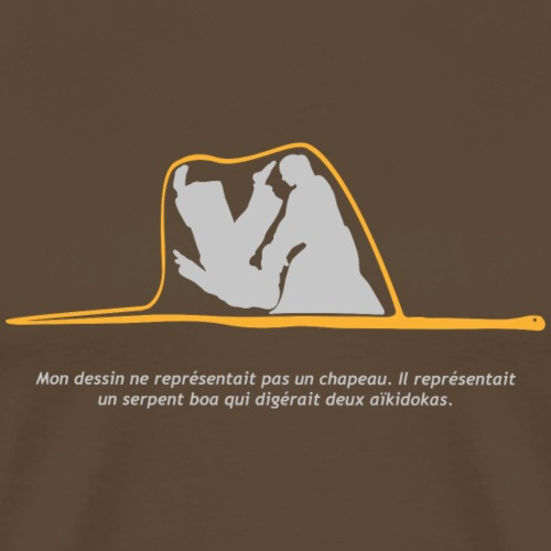 Aikido Boa fondo colores - Camiseta premium hombre