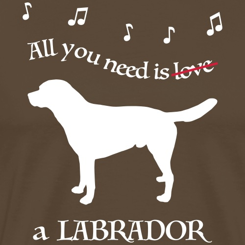 All you need is a Labrador - Männer Premium T-Shirt