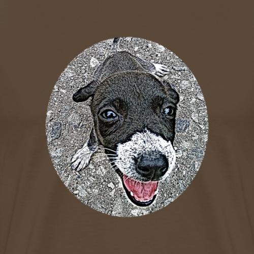 Hund- der beste Freund