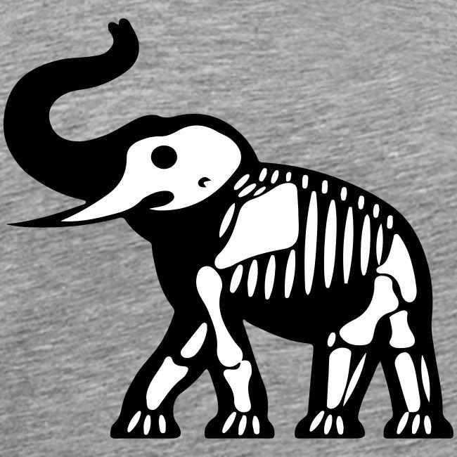 ElephantSquelette