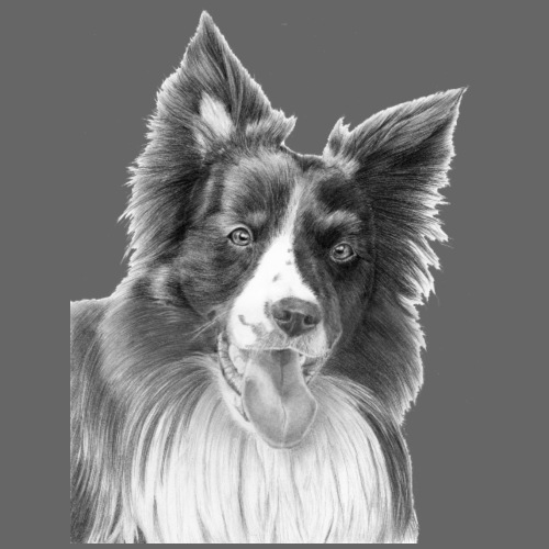 border collie 3 - Herre premium T-shirt