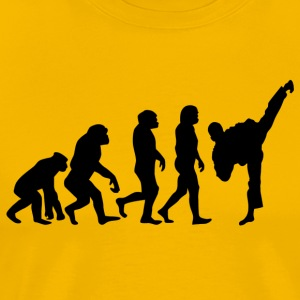 ++ ++ Martial Arts Evolution - Premium-T-shirt herr