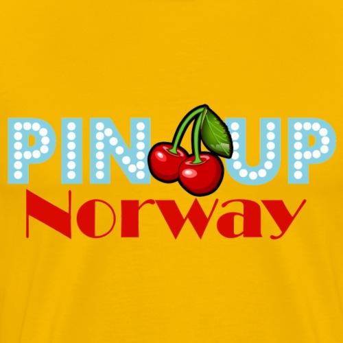 Pinup Norway - Premium T-skjorte for menn