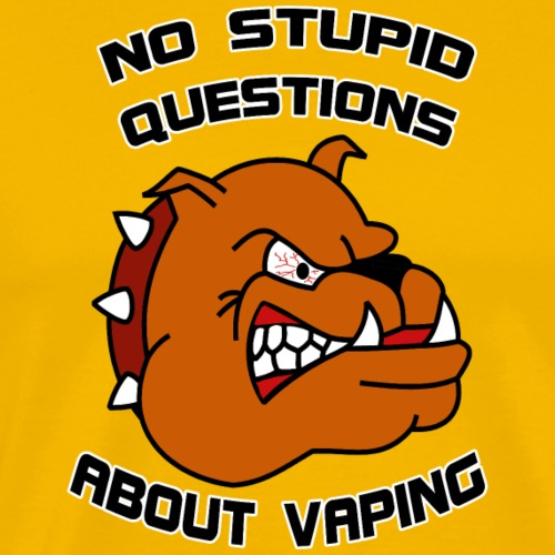 No stupid questions about vaping - Männer Premium T-Shirt