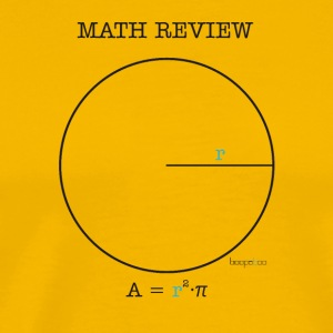 Math Review Circle - Maglietta Premium da uomo