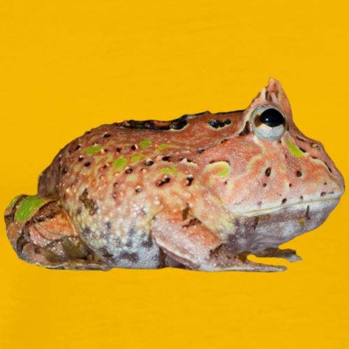 Baby Fantasy Frog - Mannen Premium T-shirt