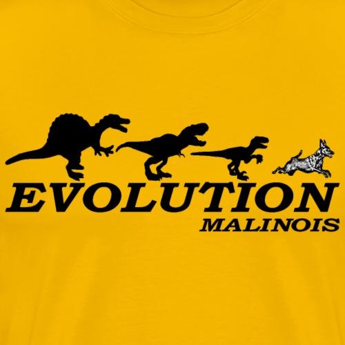 EVO.Mali - Männer Premium T-Shirt