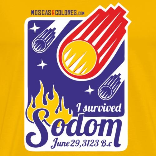 I Survived Sodom. Funny. Blue. - Camiseta premium hombre