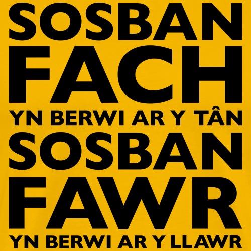 Sosban Fach - Men's Premium T-Shirt