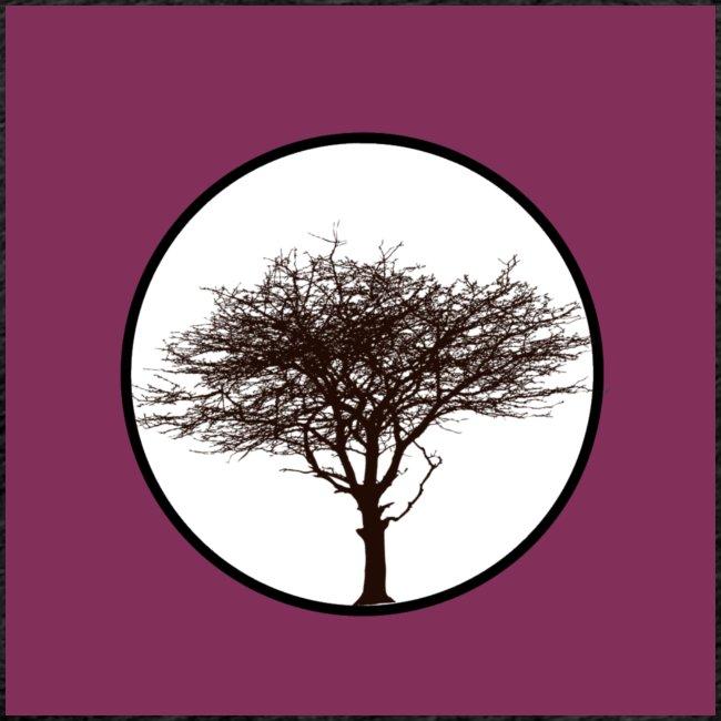 Baum in Kreis