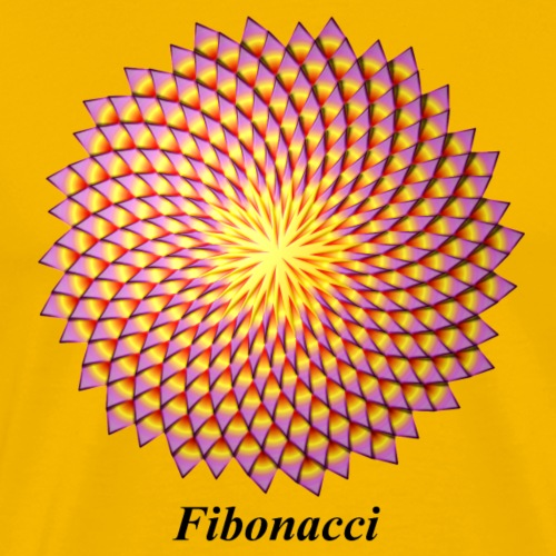 Fibonacci flower - Men's Premium T-Shirt