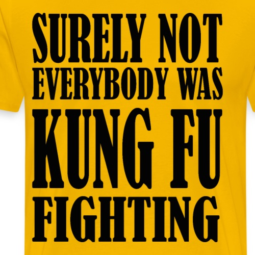 Surely not everybody was kung fu fighting - T-shirt Premium Homme
