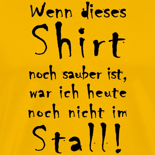 T-Shirt-Sauber_01 - Männer Premium T-Shirt