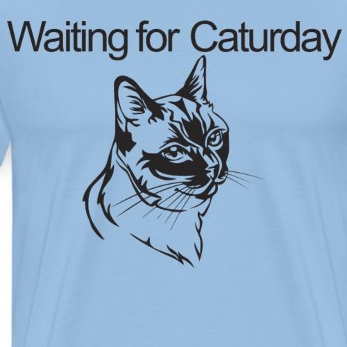Caturday - Men's Premium T-Shirt