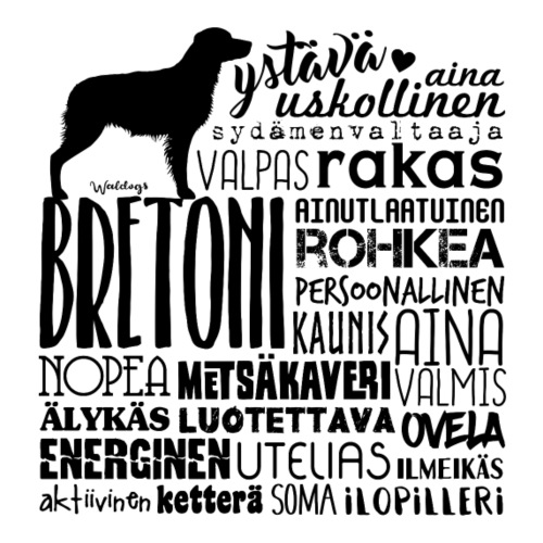 Bretoni Sanat M - Miesten premium t-paita