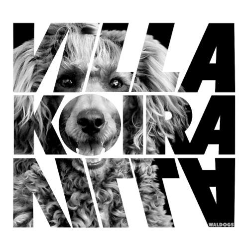 Villakoira Nassu III - Miesten premium t-paita