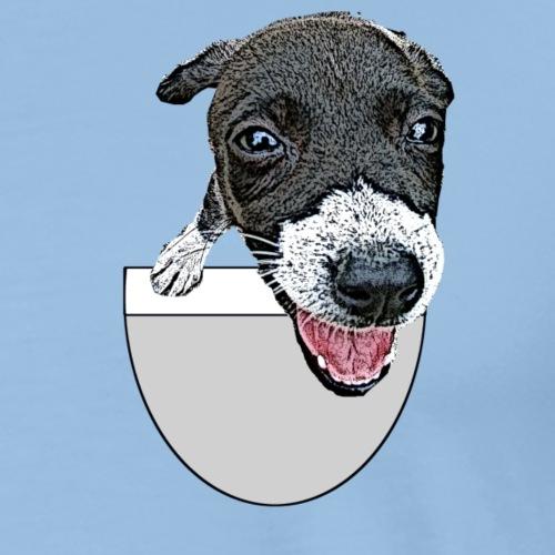 Hund in Brusttasche pocket