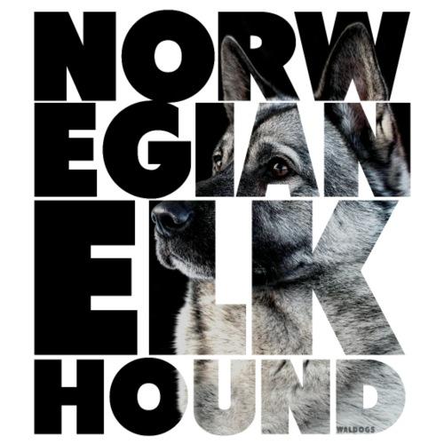 NASSU Norjanharmaa 2 - Miesten premium t-paita