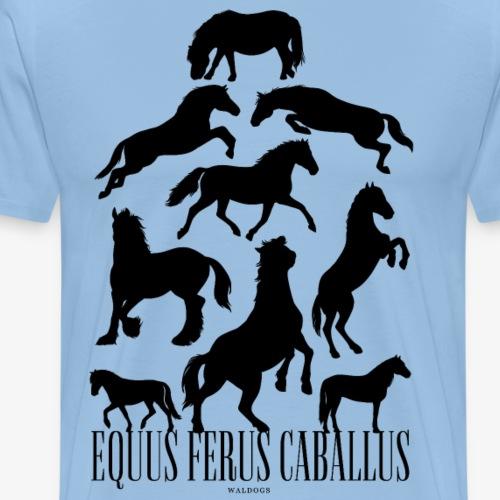 Equus Ferus Caballus Black - Miesten premium t-paita
