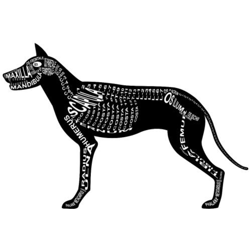 Hunde-Skelett - Männer Premium T-Shirt