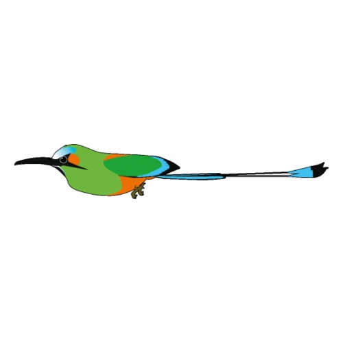 Turquoise-Browed Motmot (Torogoz/Guardabarranco) - Men's Premium T-Shirt