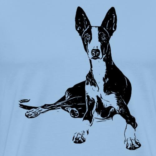 Podenco Hunde Design Geschenkidee - Männer Premium T-Shirt