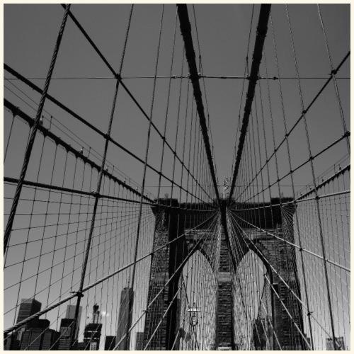 Ragnatela a New York - Maglietta Premium da uomo