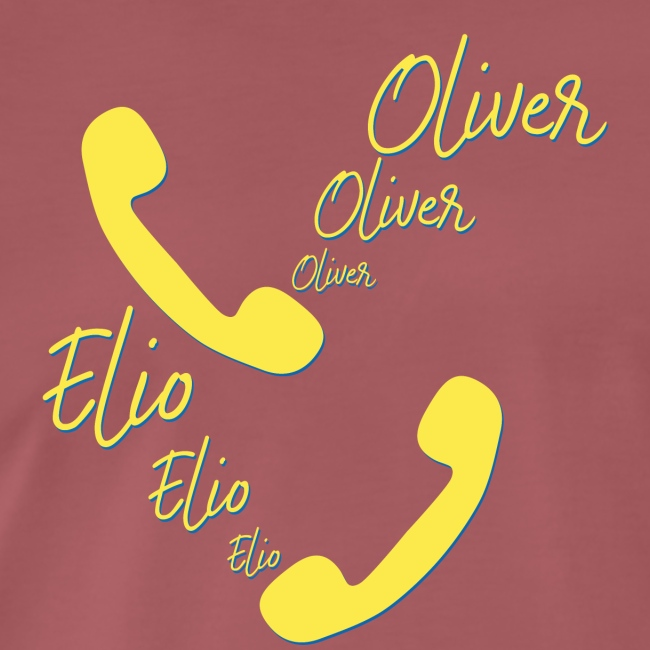 Elio und Oliver | Call Me By Your Name | Film