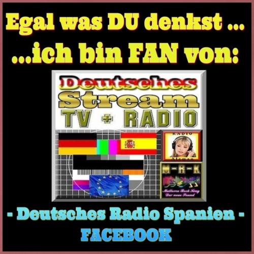 Deutsches Radio Spanien - Männer Premium T-Shirt