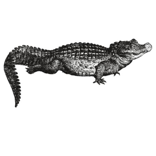 Krokodil Retro Vintage Zeichnung - Männer Premium T-Shirt