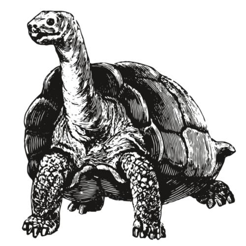 Riesenschildkröte - Männer Premium T-Shirt