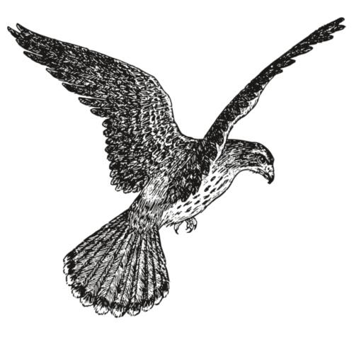 Falcon - Männer Premium T-Shirt