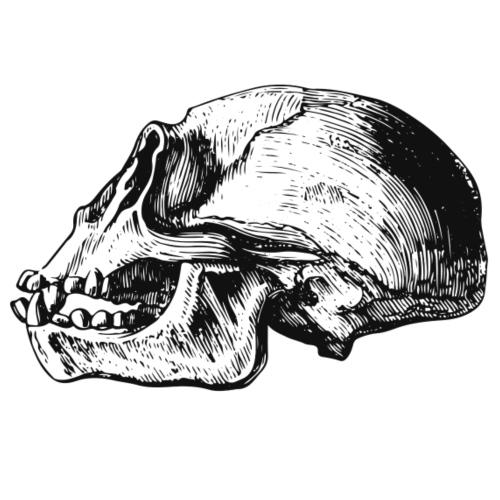 Skull Chimp - Männer Premium T-Shirt