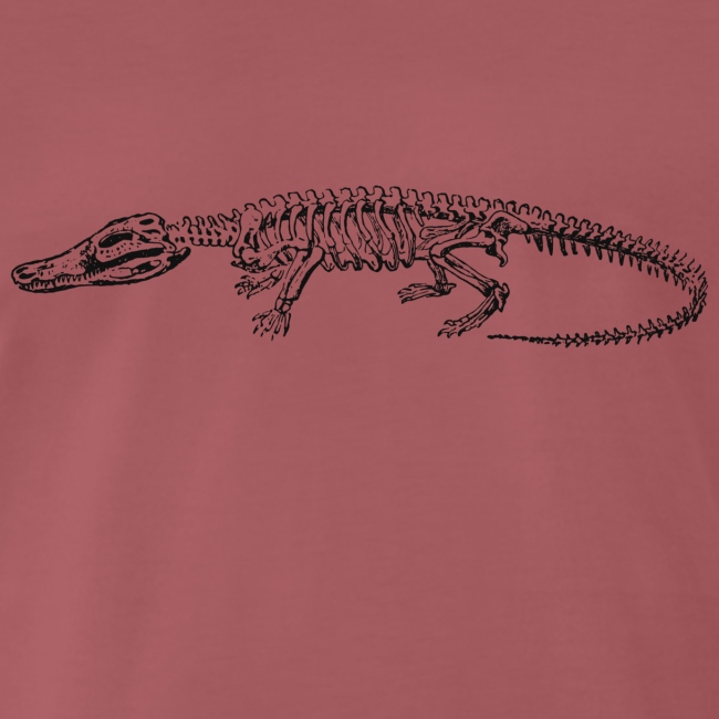 Skeleton Crocodile