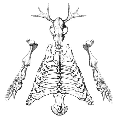 Fantasie Skelett - Männer Premium T-Shirt