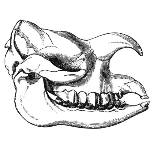 Skull Rhino Dino - Männer Premium T-Shirt